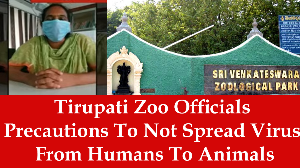Tirupati Zoo Officials Precautions To Not Spread Virus From Humans To Animals